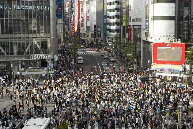 Shibuya Crossing & Hachiko