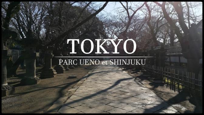 Voyage à Tokyo : Le parc Ueno + Zoo et visite de Shinjuku #3