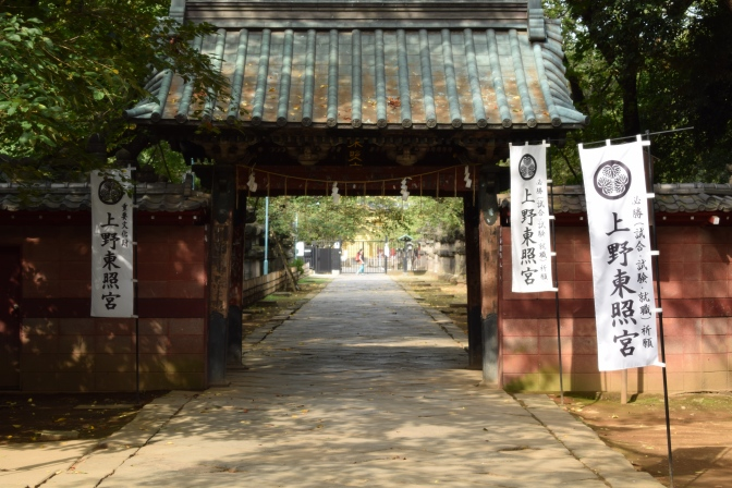 Tokyo : Balade à Ueno + Université Todai (Jour 6)