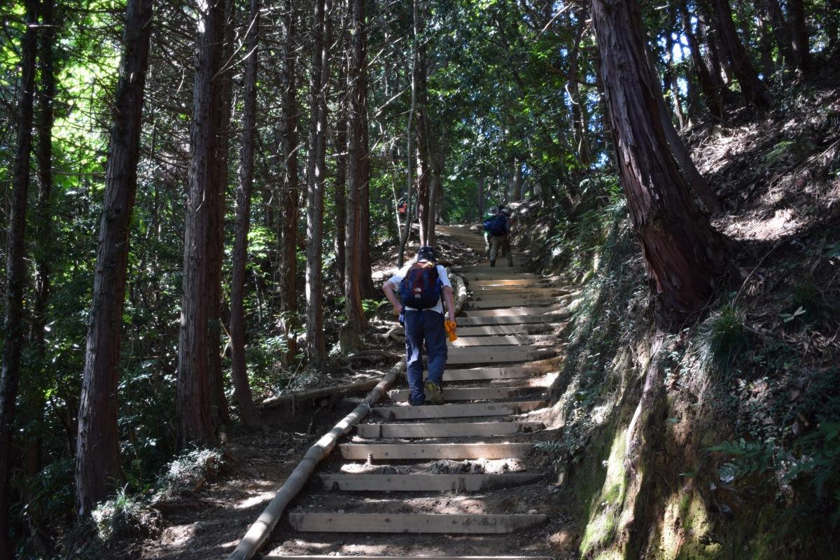 Tokyo : excursion pour l'ascension du Mont Takao