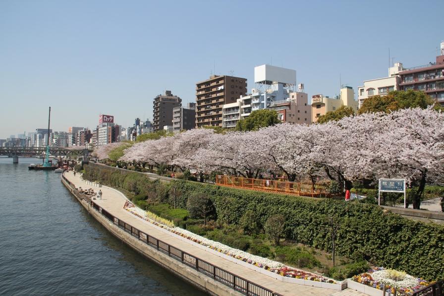 800px-Sumida_Park_2011
